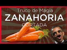 Cómo cortar una Zanahoria con un BILLETE - Truco de magia fácil - YouTube