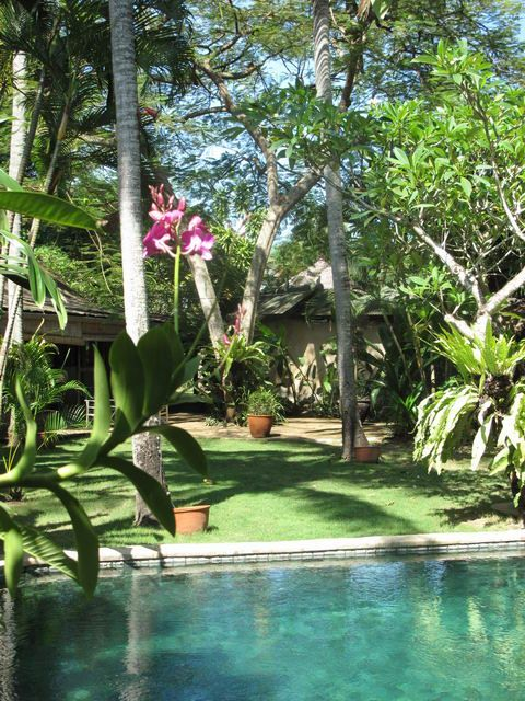 You can feel the heat and hear the birds. Beautifully done exotic Balinese garden...
