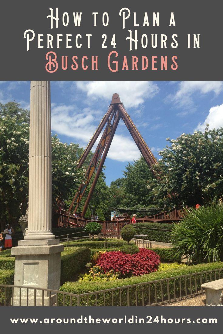 6b4ecff443a91ce6b1e3f230352638db - How Busy Is Busch Gardens On Thanksgiving