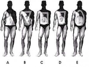 Of curvy bodies types Types of