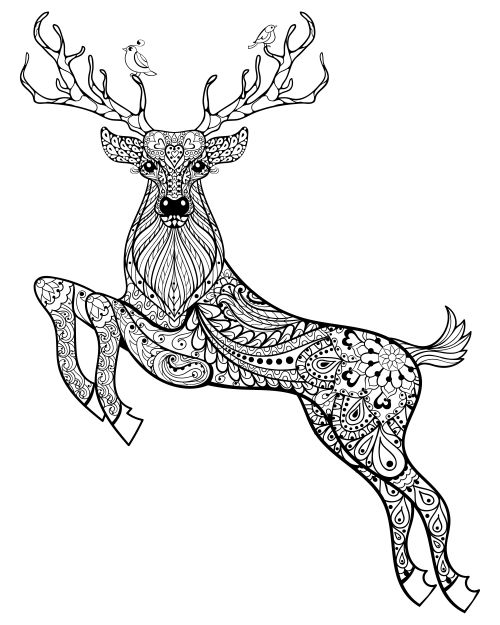 2257 best Coloring pages images on Pinterest Coloring books - new deer tracks coloring pages