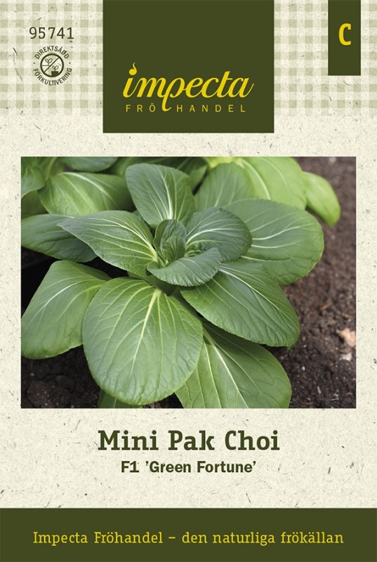 Bäckmo MINI PAK CHOI F1 'Green Fortune'