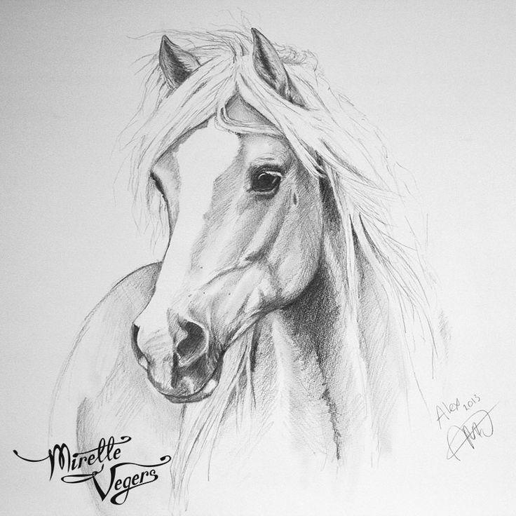 Paard Getekend Moeilijk In 2019 Pferde Zeichnen Pferde