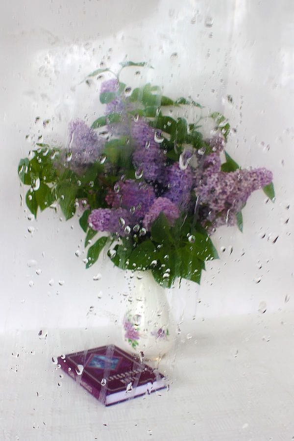 LILAC POEMS. BEHIND THE RAINY WINDOW by VICTOR KOVCHIN.   Belongs to the Gallery Russian Artists New Wave.  Spring poetic and dreamy mood with lilac branches in the vase with book of poems behind the rainy window. #RussianArtsistNewWave #Lilac #FramedPrints #Spring