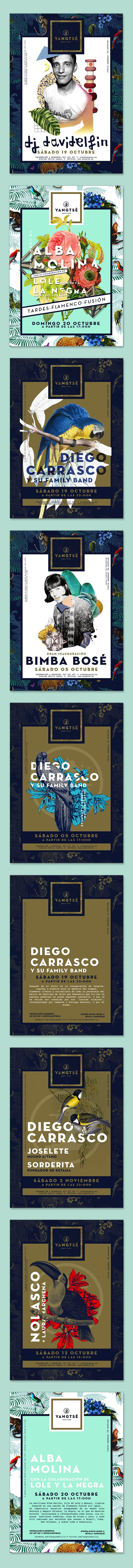 We love the graphic design details and vibrant colors in these Yangtsé Music Room flyers! #webdesign #graphicdesign #illustration