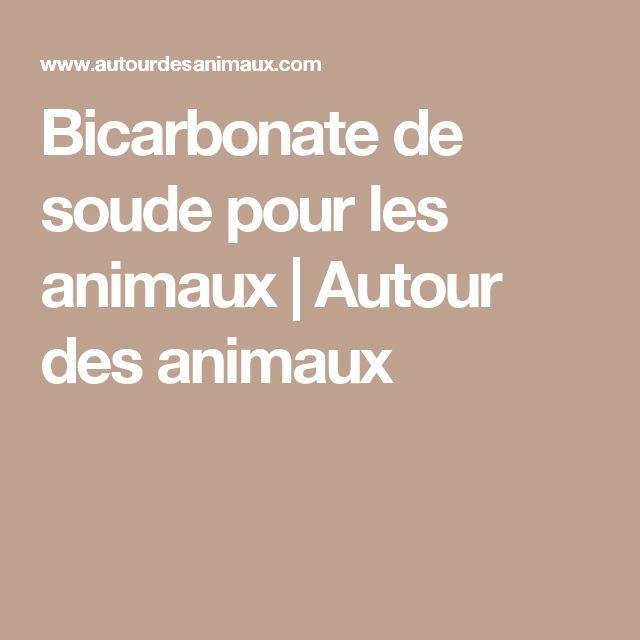 Bicarbonate de soude pour les animaux   Autour des animaux