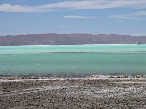 Laguna del Salar del Hombre Muerto. Catamarca, Argentina.