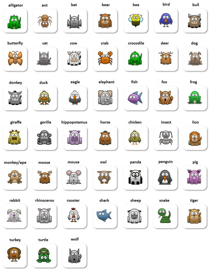 EwR.Vocabulary #English - Poster: Animals: