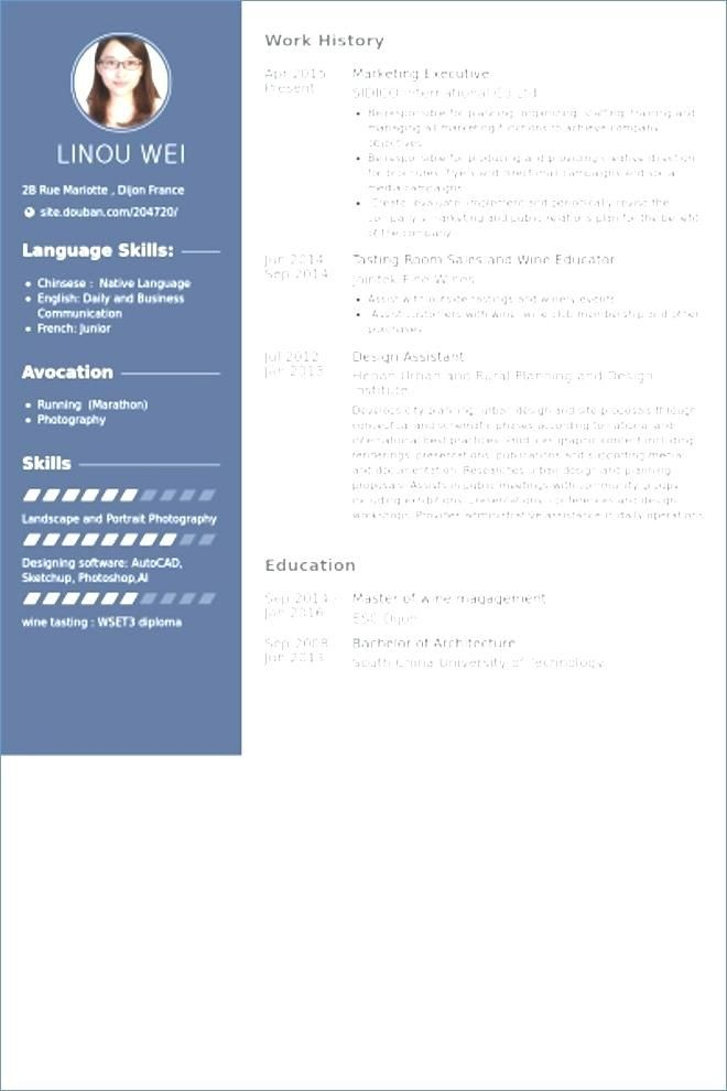 77 Inspiring Gallery Of Sample Resume For Jewelry Sales Manager