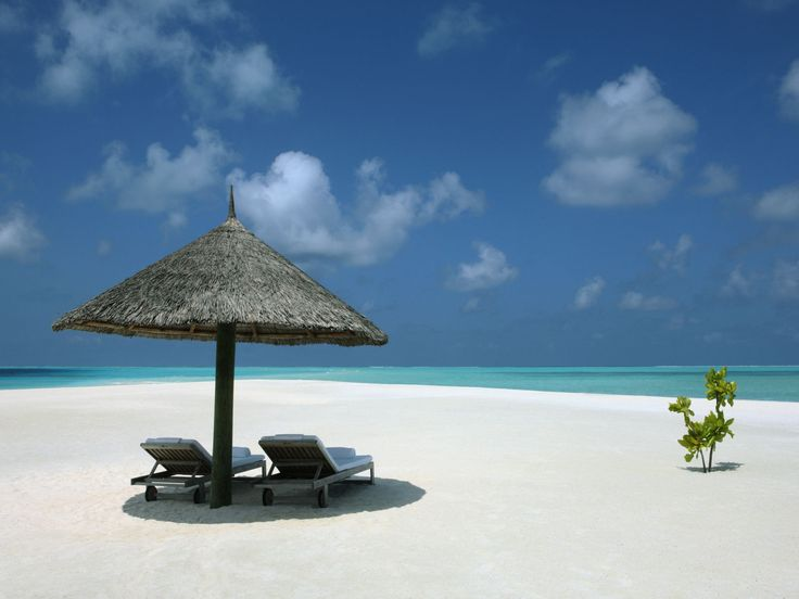 Luxury Hotel Group Gallery | COMO Hotels and Resorts: Beaches, Islands Resorts, Islands Maldives, Favorite Places, Cocoa Islands, Places I D, Travel, The Maldives, Luxury Hotels