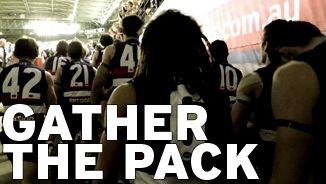 2014 Western Bulldogs Membership Video. #gatherthepack