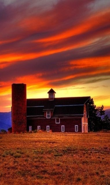 Sunset at the farm ✿⊱╮