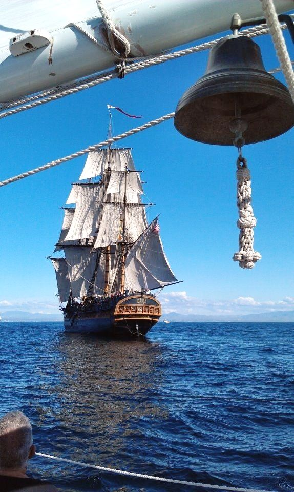 456 best boats tall ships images on pinterest sailing ships alivetotellthetail the tall ship bounty a recreation of the original 1787 hms bounty built in the ship was lost off the north carolina coast in 2012 when fandeluxe Choice Image