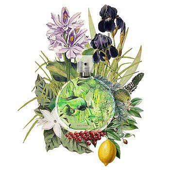 Nostalgic Art - Chanel Chance Eau Fraiche Perfume Notes 2