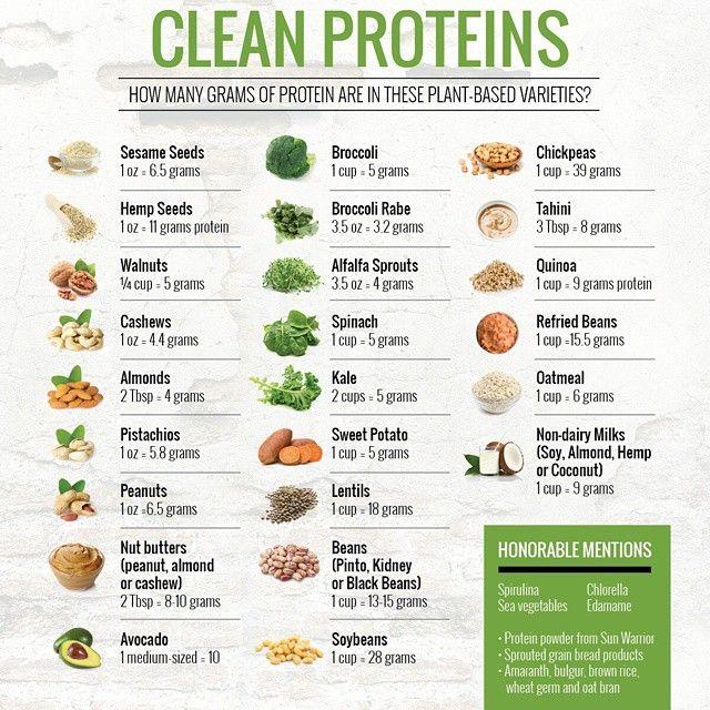Clean Proteins Tosca Reno