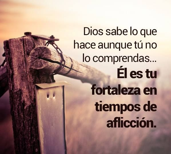 Dios sabe lo que hace aunque tu no comprendas... El es tu fortaleza en tiempos de afliccion.../Frases ♥ Cristianas ♥