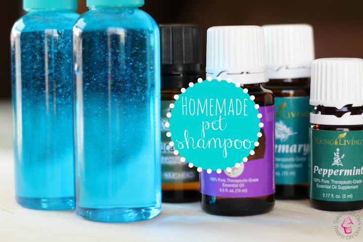 Did you know that you can make a just as effective pet shampoo yourself and save money? Check out this Homemade Pet Shampoo With Essential Oils recipe!