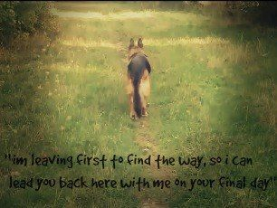 """""""I'm leaving first to find the way, so I can lead you back here with me on your final day."""""""