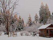 Pacific Northwest Gardener's December Checklist
