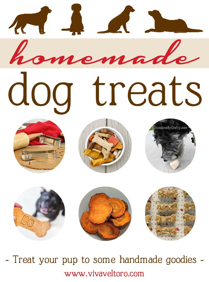 Homemade Dog Treats - a collection of yummy DIY recipes for your furry best friend. Bentley Bites: 3 C Organic Spelt Flour ½ C Organic Quinoa Flour ½ C Oatmeal 1 T Flax Meal 1 T Quinoa Grain ½ C Un-Salted Sunflower Seeds ½ C Diced Celery ½ C Diced Carrots ½ C Diced Apple ¼ C Olive Oil 1 C Organic Chicken Broth 2 Slices of Beef Liver 3 Eggs Sautee' Carrots/Apple/Celery until soft. Put Liver/Eggs/Chicken Broth/Olive Oil in food processor and puree. Add Dry Ingredients/Veggies and mix well…