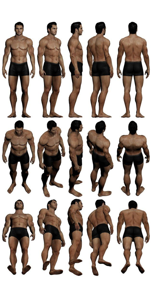 best ideas about anatomy reference body 17 best ideas about anatomy reference body reference pose reference and anatomy drawing