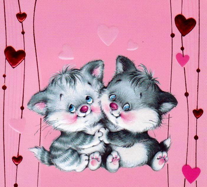 Открытки любимой котики