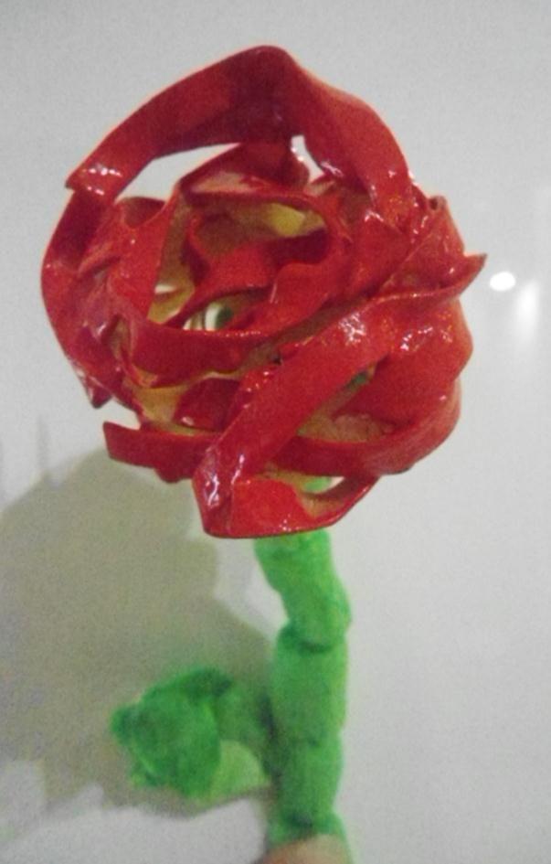 Rosa feta amb pasta (tallarines)