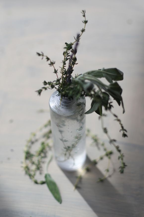 DIY All-Natural Bug Spray