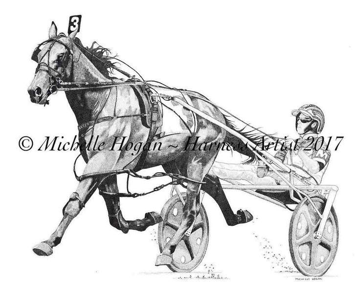 Pin on Harness racing