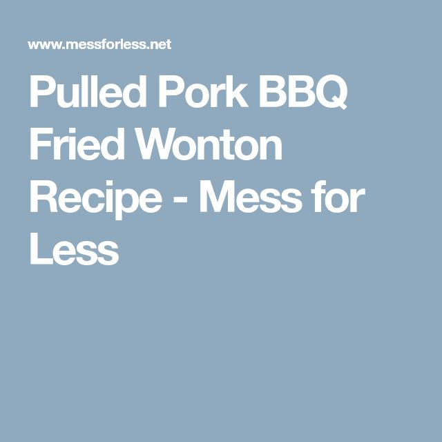 Pulled Pork BBQ Fried Wonton Recipe - Mess for Less