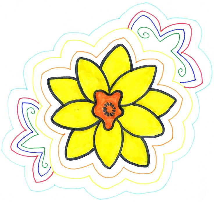 Decided to add colour to my Daffodil drawing. #Daffodil #Drawing #Colour