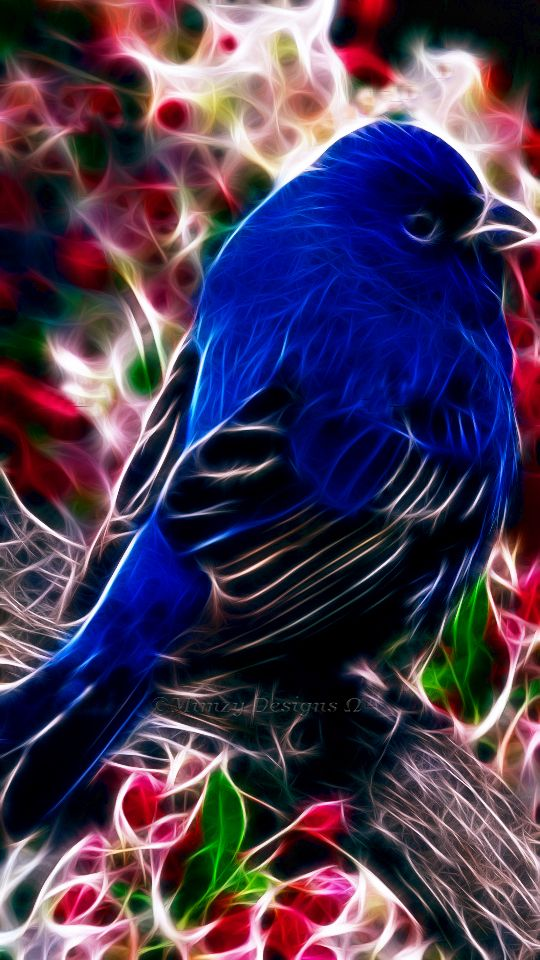 ART FRACTAL! ... l'oiseau de la passion...