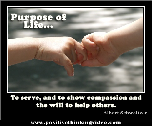 The Purpose of life redefined :)