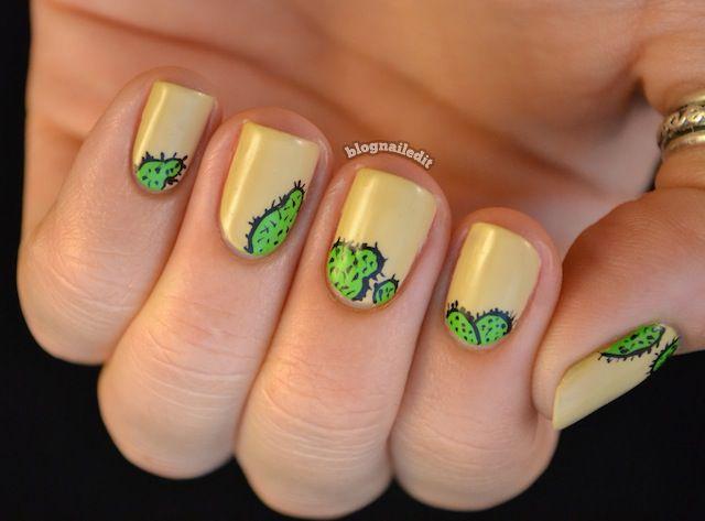 Nailed It.: Kalahari Cactus