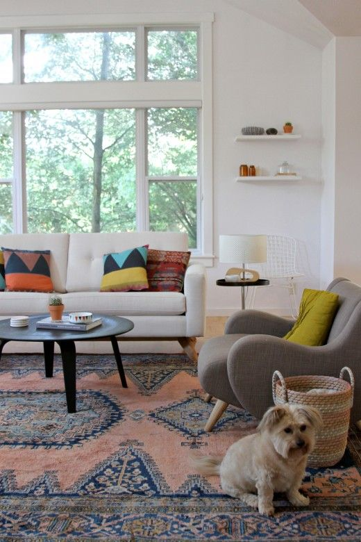 Kirsten Groves updated living room: Kirsten Grove, Adorable Dogs, Turkish Rugs, Living Rooms Pillows, Color, Updates Living, Cozy Living Rooms, Grove Updates, Cute Dogs