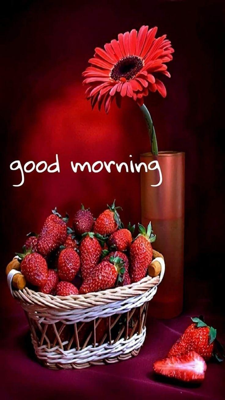 Good Morning Sprüche Auf Englisch : Besten good morning guten morgen bilder auf pinterest