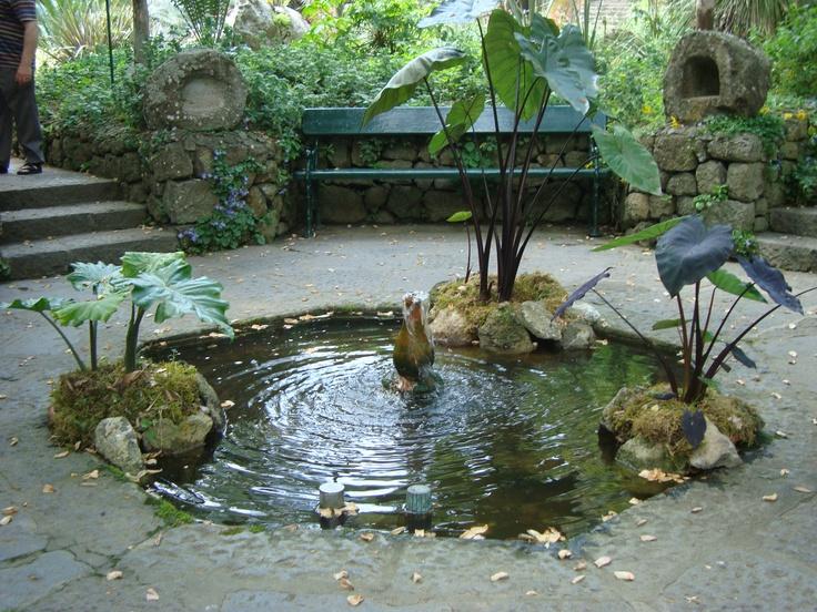 1000 images about giardini la mortella on pinterest for Garden giardini