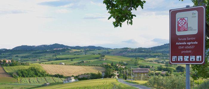 Strada dei Vini e dei Sapori di Rimini