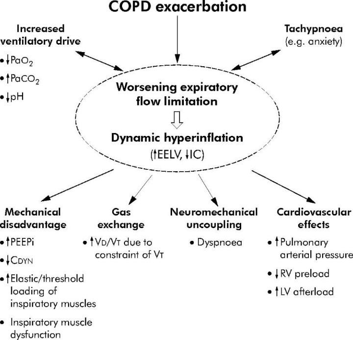 emphysema is a condition nursing essay Bestessaywriterscom is a professional essay writing company dedicated long term condition for a chosen patient with copd and planing student nursing.