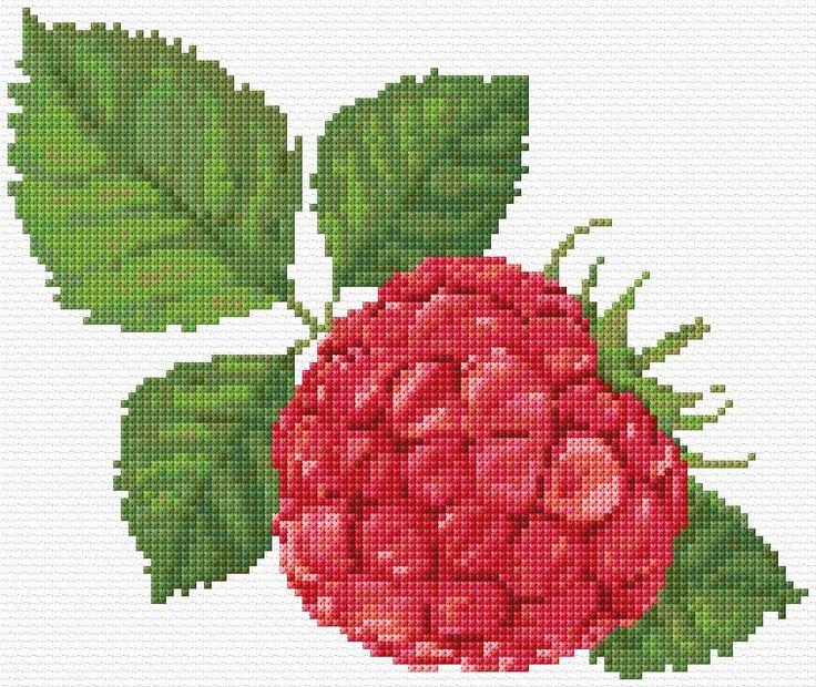 Cross Stitch | Raspberry xstitch Chart | Design