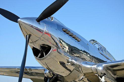 The P-40 B/C had nice lines.