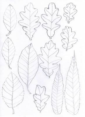 Best Leaf Images On   Paper Flowers Flower Stencils