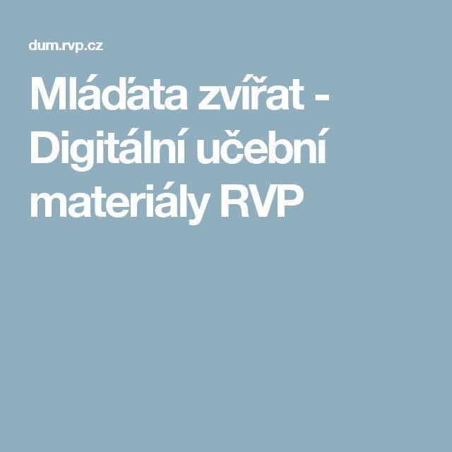 Mláďata zvířat - Digitální učební materiály RVP