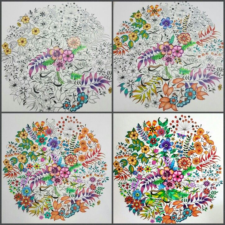 My Latest From Johanna Basfords Secret Garden