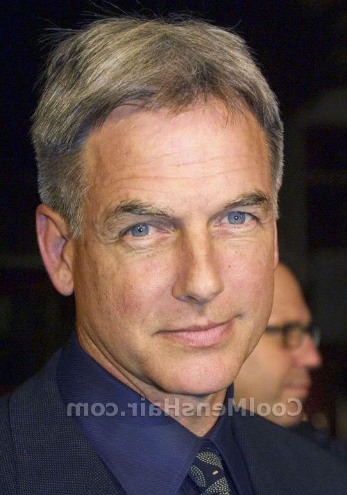Older Mens Hairstyles Thin Hair Gray Hairstyles For Older Men Cool Men39s Hair