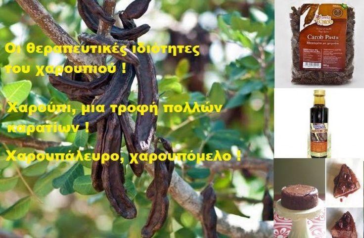 Χαρούπι: Από τροφή της κατοχής, «μαύρος χρυσός» στην Ελλάδα της κρίσης !!!