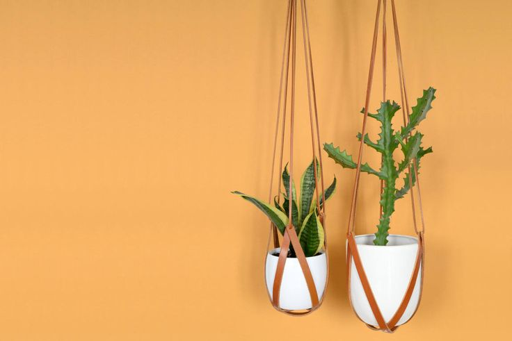 lade 2 light brown leather hanging planter