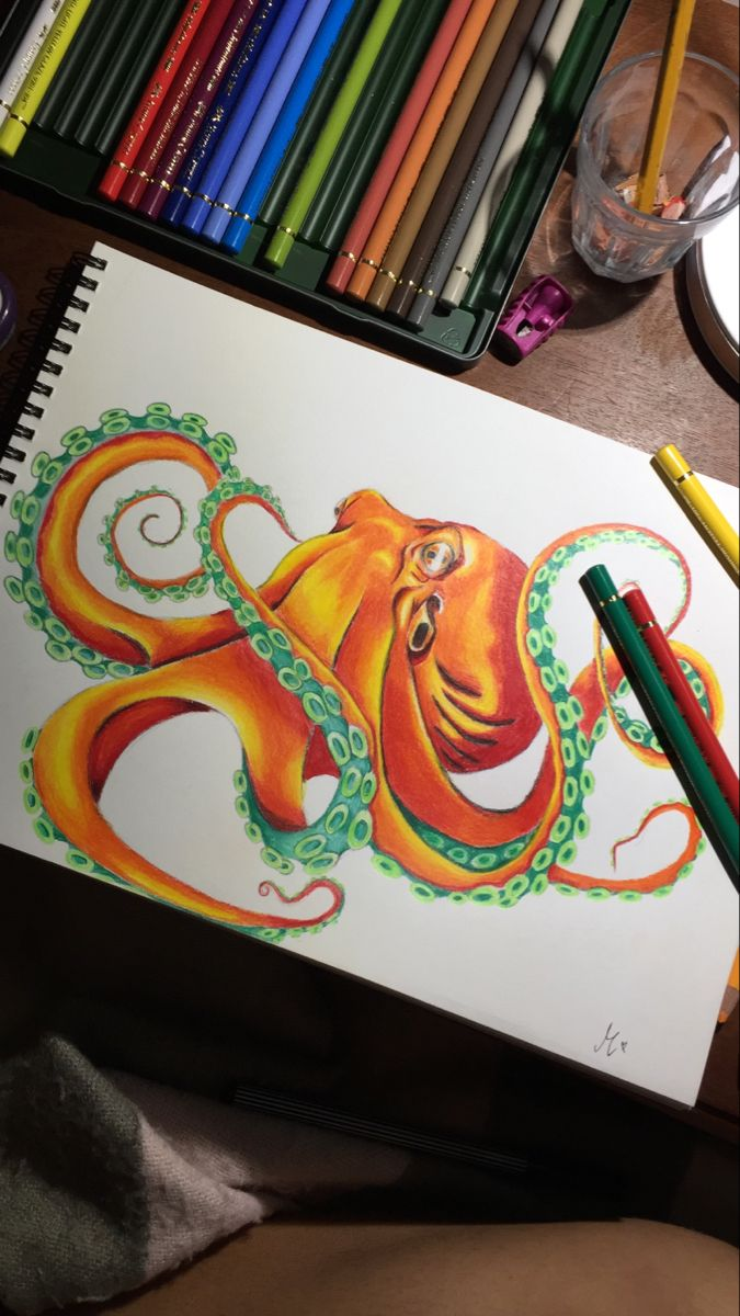 Octopus Art Lapices Faber Castell
