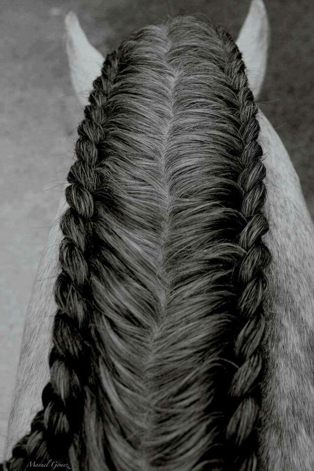 This is by far the coolest mane braid I have seen.
