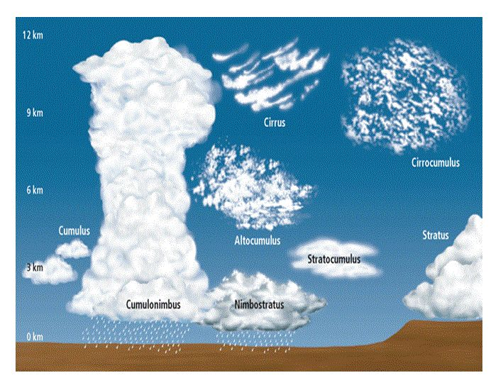 "Great ""Cloud Chart""  to print off and take outside!  www.loving2learn.com"